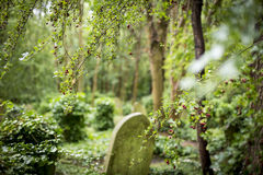 Grave Stones in Cemetery - 2 Royalty Free Stock Photography