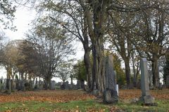 Grave stones at sunset on halloween. A grave stones in a graveyard at sunset on halloween, late October in Scotland stock photo