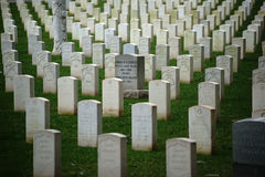 Grave stones in a row Royalty Free Stock Image