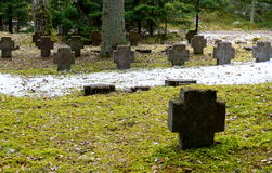 Grave stones. Grave stone in forest. Shaped as cross stock photography