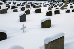 Grave stones in winter, covered in snow. Grave stones in the snow, with a white wooden cross in between royalty free stock images