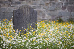 Grave surrounded by wild flowers. A lone stone grave surrounded by wild summer flowers meadow with a stone wall in the background Royalty Free Stock Photography