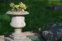 Grave vase. Grave vase with flowers on the gravestone Royalty Free Stock Photography