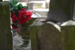 Grave vase. Grave vase with red flowers between headstones Stock Photo