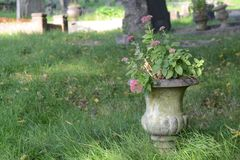 Grave vase. Stone grave vase with flowers Royalty Free Stock Photo