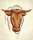 Graveer inkt trekken koeillustratie Royalty-vrije Stock Afbeeldingen