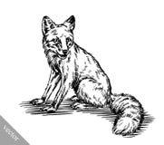 Graveer inkt trekken vosillustratie Stock Foto's