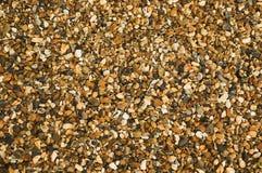 gravel гонт гороха Стоковые Фотографии RF