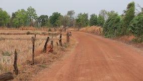 Gravel дорога (unpaved дорога) в сельском районе на Таиланде сток-видео