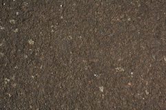 Gravel. Texture royalty free stock images