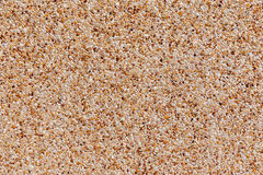 Gravel background, rock pieces texture Royalty Free Stock Images