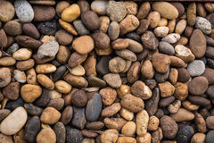 Gravel background Stock Image