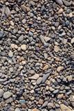 Gravel background. Stone texture. Shingle. Royalty Free Stock Images