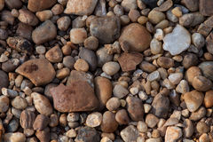 Gravel background. Texture close up Royalty Free Stock Photography