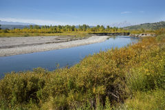 Gravel banks of Buffalo Fork river, Jackson Hole, Wyoming. Gravel banks along the Buffalo Fork River, with poplar trees and the Teton Mountains in the stock photos