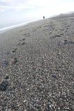 Gravel beach Stock Photos
