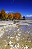 Gravel Beach. During the dry season, the river exposed the gravel bed Stock Images