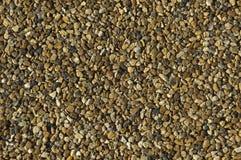 Gravel Close Up Royalty Free Stock Image