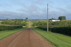A Gravel Country Road Royalty Free Stock Photography