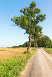 Gravel country road royalty free stock photo