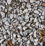 Gravel on a Forest Path Royalty Free Stock Photos
