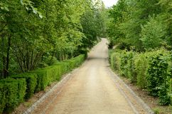 Gravel lane in the park Stock Images