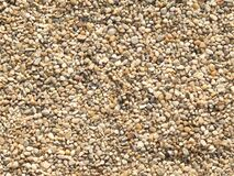 gravel-in-the-park Stock Images