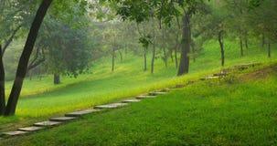 A gravel path Stock Photos