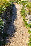 Gravel path edged with wild grass and flowers Royalty Free Stock Photo