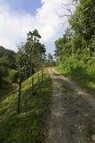 Gravel path leading up a hill at Borneo Stock Photography
