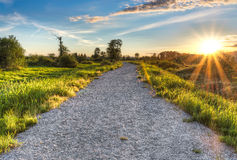 Gravel Path with Setting Sun Star Stock Image