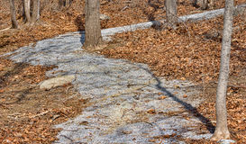Gravel path through woods Stock Photos