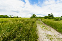 Gravel Pathway Through Field Stock Images