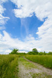 Gravel Pathway through Field-Vertical Stock Image