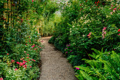 Gravel pathway in the garden Stock Photography