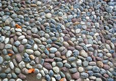 Gravel pavement texture Royalty Free Stock Images