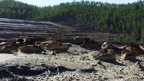 Gravel quarry with forest on the background. Stock footage. Old tree trunk and stones at the quarry on a summer sunny