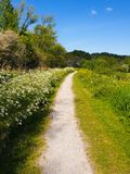 Gravel recreation path in the green nature stock photo