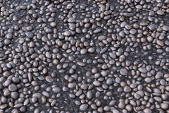 Gravel in the river Royalty Free Stock Images