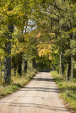 Gravel road alley Stock Photography