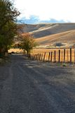 Gravel Road along a fenced wheat field Royalty Free Stock Photo