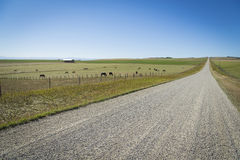 Gravel Road in the Countryside Stock Photos