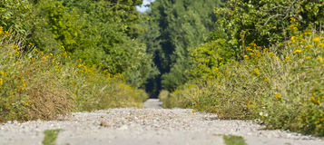 Gravel road. Stock Image