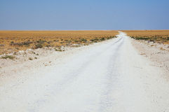 Gravel road. Dirt road  in Etosha National Park Royalty Free Stock Photos