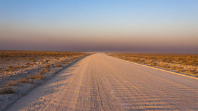 Gravel. Road in the Etosha National Park, Namibia Royalty Free Stock Photography