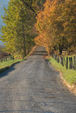 Gravel Road in Fall Royalty Free Stock Photo