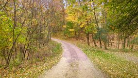 Gravel Road in Fall with Yellow Trees stock photos