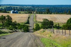 Gravel road among farm fields in Eastern Oregon. Farm fields and gravel road in Eastern Oregon Stock Photography