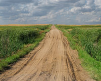 Gravel road through flat prairie. Royalty Free Stock Image