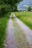 Gravel Road in Flums Royalty Free Stock Photo